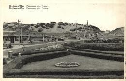BELGIQUE - FLANDRE OCCIDENTALE - BREDENE-s/MER - BREDENE-a/ZEE - Panorama De Dunes - Panorama Der Duinen. (*). - Bredene
