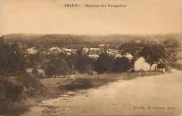 Depts Div - Nievre - Ref- U876 - Arleuf - Hameau Des Pasquelins - Hameaux -  Carte Bon Etat - - Autres Communes