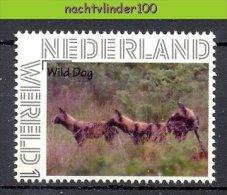 FG161 PERSOONLIJKE POSTZEGEL PERSONAL STAMP FAUNA ZOOGDIEREN WILDE HOND WILD DOG HUNDE MAMMALS NEDERLAND PF/MNH - Hunde