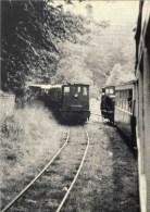 DALHEM Trembleur - Mortroux - Warsage - Dalhem