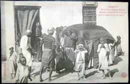 DJIBOUTI  SCENE D'UN MARIAGE ENTREE SOLENNELLE  DE LA FIANCEE  ETHNOLOGIE FETE COUTUMES - Djibouti
