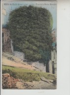 EURE - BEZU ST ELOI - Le Moulin - Tour De La Reine Blanche - Francia