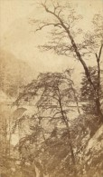 Grande Chartreuse Pont Saint Bruno Isere Second Empire CDV Photo 1865 - Old (before 1900)