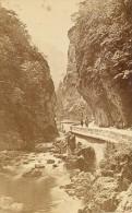 Grande Chartreuse Entrée Du Désert Isere Alpes CDV Photo 1876 - Old (before 1900)