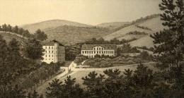 Allemagne Wiesbaden Nerothal Ancienne CDV Photo 1870