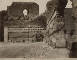 Roma Caracalla Terme Bath Mosaic Old Photo 1880 - Photographs