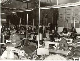 Belgium Quaregnon Textile Women Workers Old Photo 1963 - Non Classés