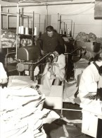 Belgium Quaregnon Textile Women Workers Old Photo 1963 - Unclassified