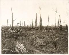 Delville Wood Burmese British Troops WWI Photo 1917' - War, Military