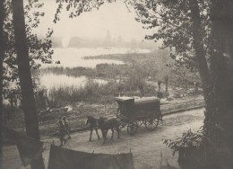 Marais De La Somme WWI Military Scene Old War Photo - War, Military