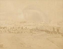 Tunis Horses Market Tunisia Old Garrigues Photo 1880 - Anciennes (Av. 1900)