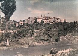 Provence Le Cannet France Autochrome Photo 1925