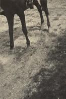 Le Photographe A Bougé Photo Ratée France Photographie 1947 - Ohne Zuordnung