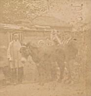 Ane Et Chien Scene Humoristique France Ancienne Photo Stereo Amateur 1870 - Stereoscopic