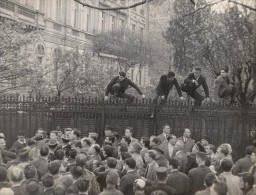 Manifestation Anti Independance Marocaine France Ancienne Photo 1952 - Photographs