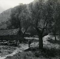 France Corse Corte Hameau Derriere Citadelle Du Tavignano Ancienne Stereo Photo Stereoscope 1920 - Photos Stéréoscopiques