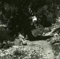 France Corse Corte Hameau Derriere Citadelle Du Tavignano Ancienne Stereo Photo Stereoscope 1920 - Stereoscopic