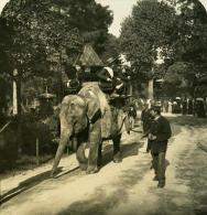 France Paris Instantanée Promenade Sur L Elephant Ancienne Photo Stereo NPG 1900 - Stereoscopic