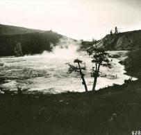 USA Parc De Yellowstone Terrasse D'un Geyser Ancienne NPG Stereo Photo 1900 - Stereoscopic
