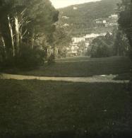 Italie Ligurie Riviera Gênes Nervi Viali Ancienne NPG Stereo Photo 1900 - Stereoscopic