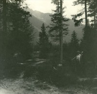 France Haute Savoie Chamonix Mont Blanc Ancienne Photo Stereo Possemiers 1920 - Stereoscopic