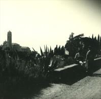 France Corse Capo Di Lino Eglise & Tombeaux Ancienne Stereo Photo Amateur 1920 - Stereoscopic