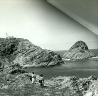 France Corse Ile Rousse Rocher Du Phare Ancienne Stereo Photo Amateur 1920 - Photos Stéréoscopiques