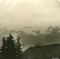 Suisse Alpes Panorama Du Stauserhorn Ancienne Stereo Studio Anonyme Photo 1906 - Stereoscopic