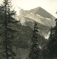 Suisse Alpes Col De La Gemmi Rinderhorn Ancienne NPG Stereo Photo 1906 - Stereoscopic