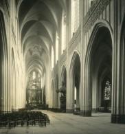 Belgique Port D Anvers Cathedrale Interieur Ancienne NPG Stereo Photo 1906 - Photos Stéréoscopiques