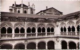 VALLADOLID - Patio De San Gregorio - Detalle - Valladolid