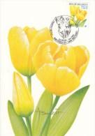 België, Maximumkaarten, Nr 3223, Buzin, Tulipa (6028) - Otros