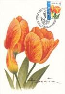 België, Maximumkaarten, Nr 3406, Buzin, Tulipa (6073) - Sin Clasificación