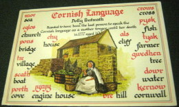 England Cornwall Cornish Language 6303 - Murray King - Unused - Angleterre