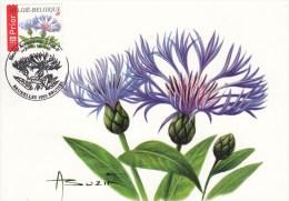 België, Maximumkaarten, Nr 3548, Buzin, Centaurea (6104) - Sin Clasificación