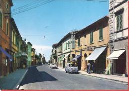 --  VINCENZO-- VIA AURELIA -- 1965 -- COMMERCES + VOITURES - Livorno