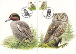 België, Maximumkaarten, Nr 3623/3624, Buzin (6118) - Vögel