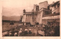 66 PRATS DE MOLLO LE FORT MOUTONS CIRCULEE 1932 - Francia