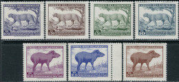 Paraguay 1961. Michel #912/18 MNH/Luxe. Animals (TS28/11) - Paraguay