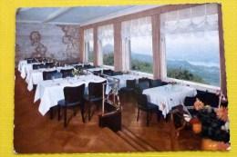 Hotel Petersberg / Bad Godesberg / Bonn (Blick Von Den Rheinterrassen) - Hotels & Gaststätten