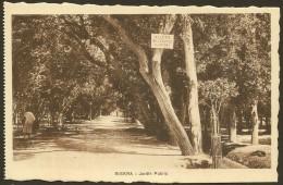 BISKRA Rare Jardin Public (Richardet) Algérie - Biskra