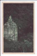 CPA N° 13669 - Fontaine De Beaulieux - LA LAIGNE (Chte Inférieure) - Autres Communes