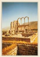 LIBANO   AANJAR:    ROVINE  OMAYYADI     (NUOVA  CON DESCRIZIONE  DEL SITO  SUL  RETRO) - Libano