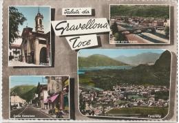GRAVELLONA TOCE ( VERBANIA ) SALUTI - ACQUERELLATA - EDIZ. MELONI 1961 - Verbania