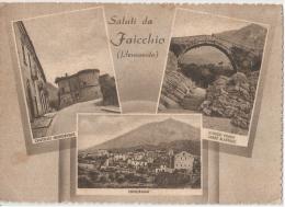 FAICCHIO ( BENEVENTO ) SALUTI - VEDUTINE - EDIZIONE PALMIERI - 1953 - Benevento