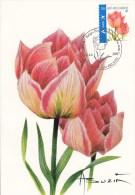 België, Maximumkaarten, Nr 3723, Buzin, Tulipa (6136) - Sin Clasificación