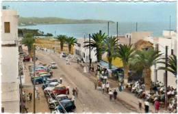 Cpsm Tunisie, La Marsa, Avenue Habib-Bourguiba - Tunisie