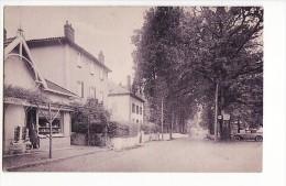 "Cambo Les Bains - Les Allées, Librairie ""Les Hortensias Bleus"" - Cambo-les-Bains"