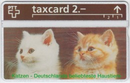 SWITZERLAND A-988 Hologram PTT Private - Animal, Cat - 344L - MINT