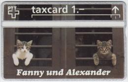 SWITZERLAND A-992 Hologram PTT Private - Animal, Cat - 211L - MINT